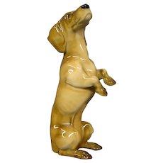 Hutschenreuther porcelain JHR begging standing dachshund dog figurine