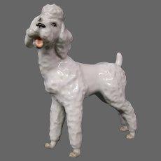 Austria Augarten Wien porcelain dog figurine white standing poodle