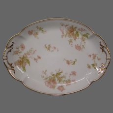 Haviland Limoges Springtime France oval serving platter