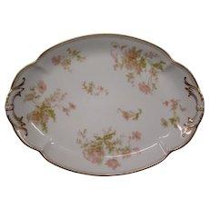 Haviland Limoges Springtime France oval serving platter