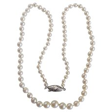 Vintage AA Quality Japanese Cultured Akoya Pearl Graduated Silver 850 Clasp Necklace