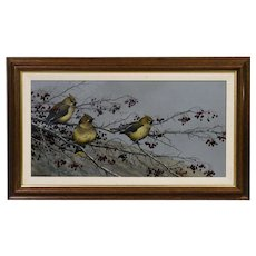 TIM SCHULTZ (American), signed lower left, original oil on board depicting three Cedar Waxwing birds on a tree branch.
