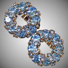 Warner Earrings. Rhinestone Earrings. Vintage Earrings. Jewelry for Brides. Aquamarine Earrings. Wreath Earrings. Jewelry for Women. waalaa