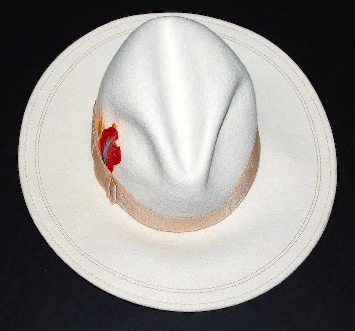 f52127a0fa4369 ASTRE Winter White Wool Fedora Hat with Feather Accent : Kitsch ...