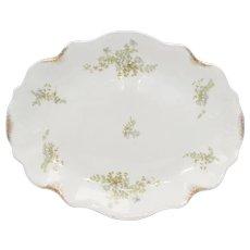 "J & G Meakin 14"" Blue Flower & Gold Speckle MEK38 Semi-Porcelain White Oval Serving Platter"
