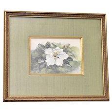 Hand Signed Mary Bertrand White Plumeria Flower Limited Edition Art Print w/ Sage Green Silk Mat & Original Frame