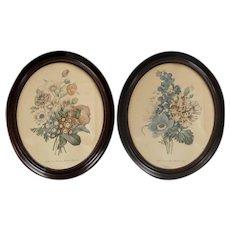 "Pair of Large 19"" Victorian Geranium & Anemone Botanical Flower Art Prints in Genuine Solid Wood Oval Frames"