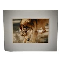 """Original Andy Marquez Signed & Numbered """"Treasure Hunt"""" Wolf in the Winter Snow White Matted Color Photograph"""