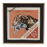 c1965 Framed German Shepherd Dog Romania Postage Stamp