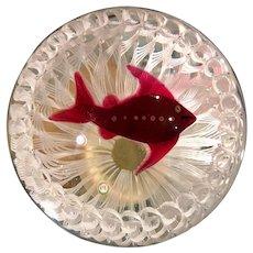 Signed Paul Ysart Studio Glass Paperweight Red Fish