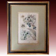 "Rare 19th Century Watercolor Prints ""Fleurs de Fantasie"" by Buchert"
