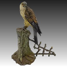 19th Century Cold Painted Hawk Sculpture