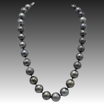 Single Strand of Large Tahitian South Sea Cultured Pearls with Sterling Silver Clasp
