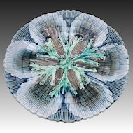 Victorian Etruscan Majolica Shell and Seaweed Plate