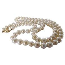 14 Karat Clasp on Creamy White 8 MM Round Cultured Pearls