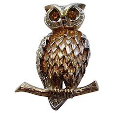 Vintage Panetta Goldtone Eyed Owl Pin