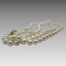 Cultured White Pearls With a 14 Karat Yellow Gold Clasp
