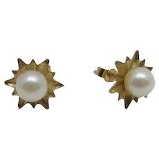 Petite Cultured Pearl Earrings in  14 Karat Yellow Gold