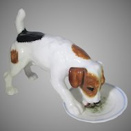 Royal Doulton Jack Russel Terrier Cleans His Plate  HN 1158