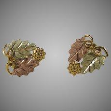 10 Karat Black Hills Gold Earrings in  Multi Tones and Grape Leaf Motif