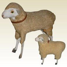 German Putz Wooly Sheep