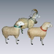 German Putz Wooly Sheep And A Goat