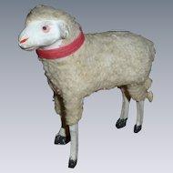German Wooly Putz Sheep