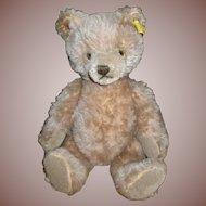 """9"""" Steiff Caramel Mohair Teddy Bear"""