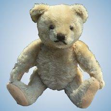 8 Inch Mohair Teddy Bear