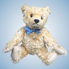 Sweet Steiff Teddy Bear