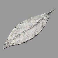 Tiffany Leaf Form Bookmark Sterling Silver