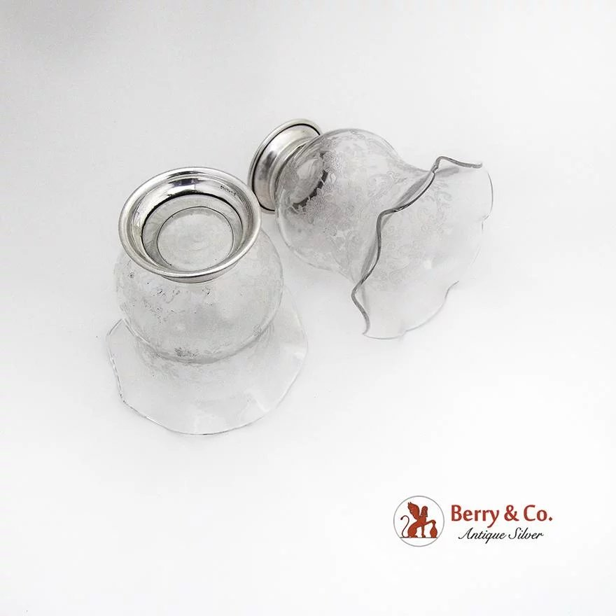 Antique Etched Berry Glass
