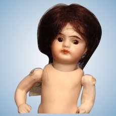 """Sabine"" mohair wig for mignonette with 3"" circumference--Free shipping!"