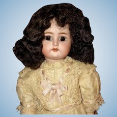 Dark Brown Mohair Wig Size 8-9 for German or French Doll