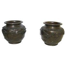 Bronze Cache Pots- Flower and Bird Decoration