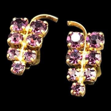 Rhinestone Grape Earrings
