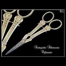 Antique French Sterling Silver & Vermeil Pair of Grape Scissors, Nemours Model.