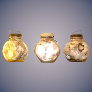Vintage Store Jars filled with Sea Shells