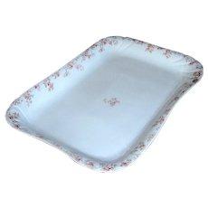 Vintage Limoges Porcelain Platter C H Field