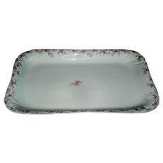 Limoges Porcelain Platter signed Haviland Limoges