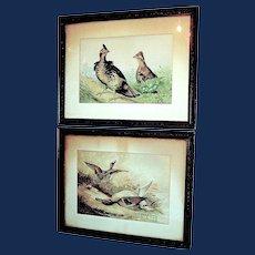 Pair of Antique Alexander Pope Chromolithograph Prints