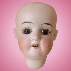Bisque Doll Head by Schoenau & Hoffmiester