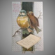 Vintage Postcard, Birthday with Pair of Bluebirds, Embossed