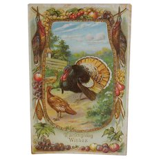 Thanksgiving Postcard Harvest Images/Turkey/Embossing c.1910