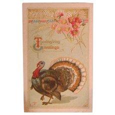 """Thanksgiving Turkey Postcard, Marked """"P SANDER"""", C. 1911-12"""