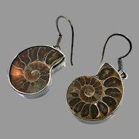 Ammonite Earrings, Fossil Shell, Sterling Silver, Vintage Earrings, .950 Silver, Designer, Charles Albert, Pierced Dangle