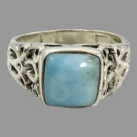 Larimar Ring, Sterling Silver, Vintage Ring, Blue Stone, Statement Ring, Dolphin Stone, Size 9 1/2