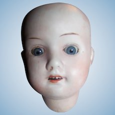 Germany Herms Steiner Doll Head