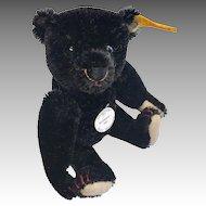 Steiff Made in Germany Black Teddy Bear