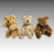 3 Miniature Vintage Steiff Doll Size German Teddy Bear